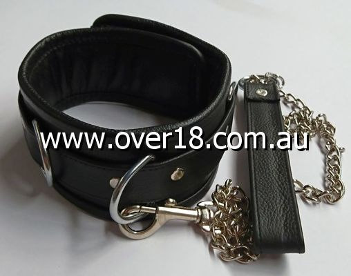 Control Collar with Lead