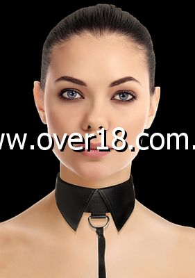 Ouch! Classic Collar with Leash
